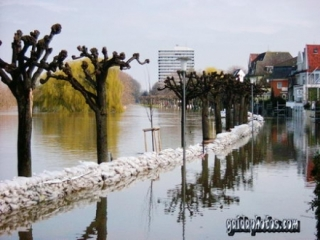 Bilder aus Köln-Rodenkirchen