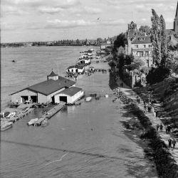 Bootshäuser am Rhein