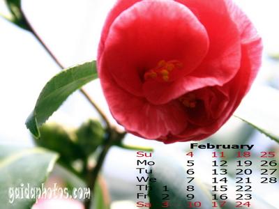 gratis kalender hintergrundbild f r februar k ln rodenkirchen und die welt. Black Bedroom Furniture Sets. Home Design Ideas