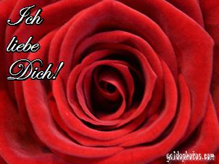 zur Hochzeit Liebesgedichte goldene Glückwünsche Gedichte Glückwunsch Karte Karten silberne