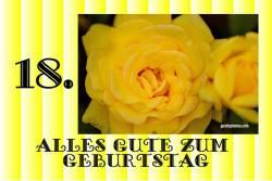 18. Geburtstag - Karte - Rose gelb