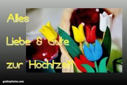 Karte Hochtzeitstag Tulpen, bunt