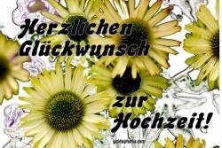 Hochzeitskarte Sonnenblumen