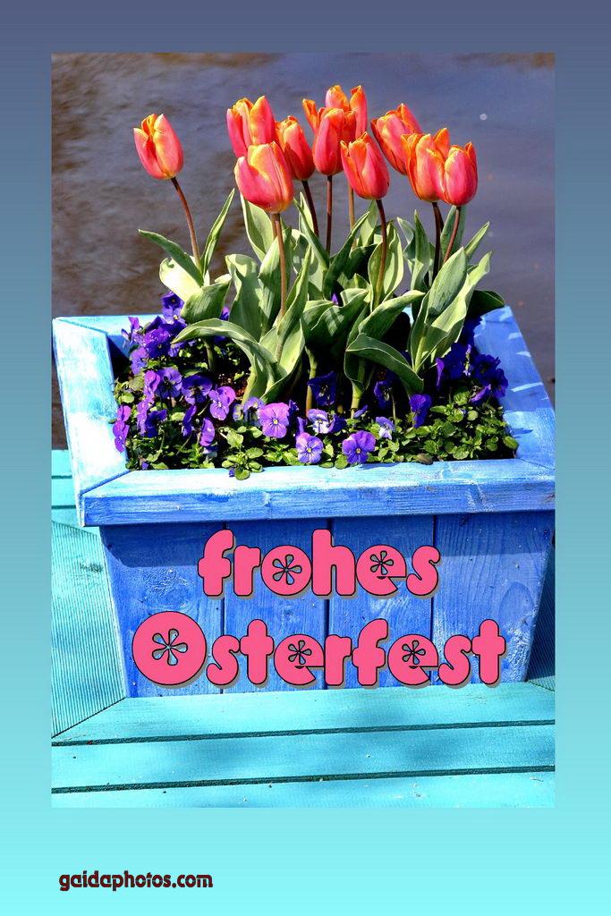 Karte zu Ostern, Tulpen