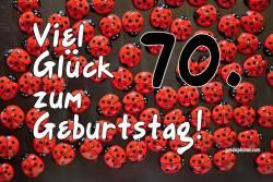 70. Geburtstag Karte Marienkäfer