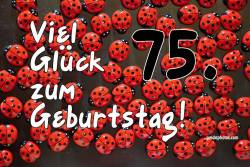 75. Geburtstag Karte Marienkäfer