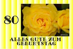 Zum 80 Geburtstag Rose gelb