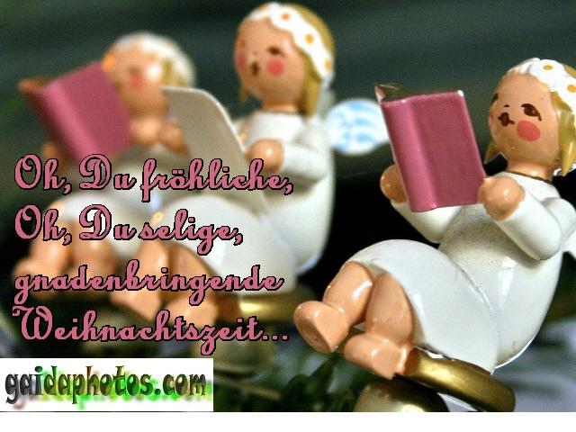 Kostelose weihnachtsgrube