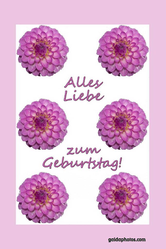 Geburtstagskarte, Liebe, Dahlie, Pink