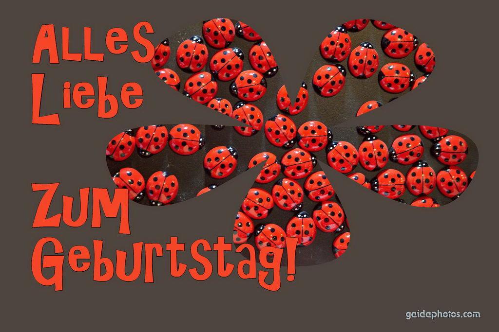 Geburtstagskarte, Liebe, Marienkäfer