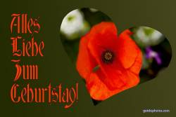 Geburtstagskarte, Liebe, Mohn, Blume, rot