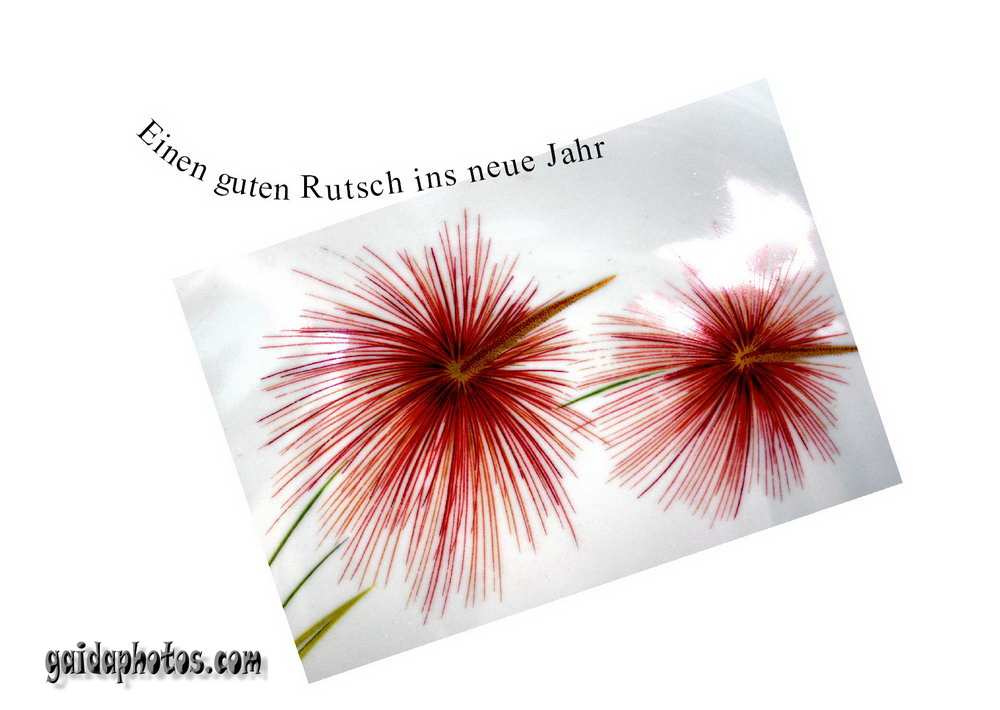 Kostenlose Neujahrskarten - gaidaphotos Fotos und Bilder
