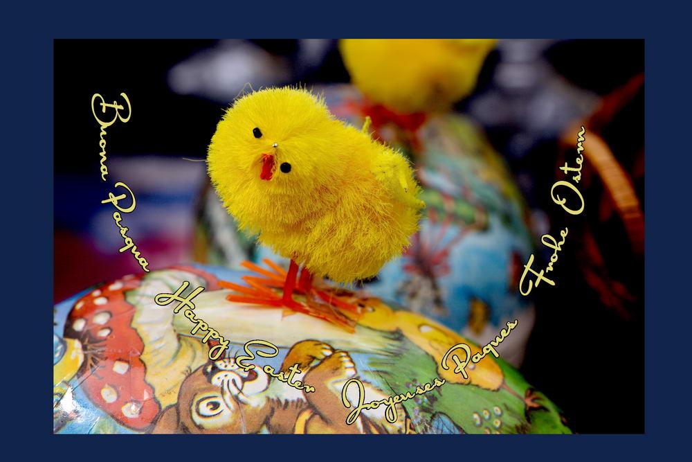 Osterkarten international